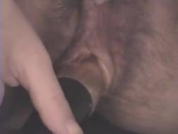 Ciężarna kobieta za pomocą lizaka pociera dużą włochatkę swojego dziecka od pleców