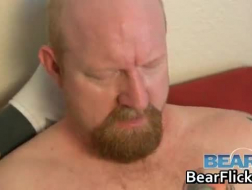 A tiny Bear sucking